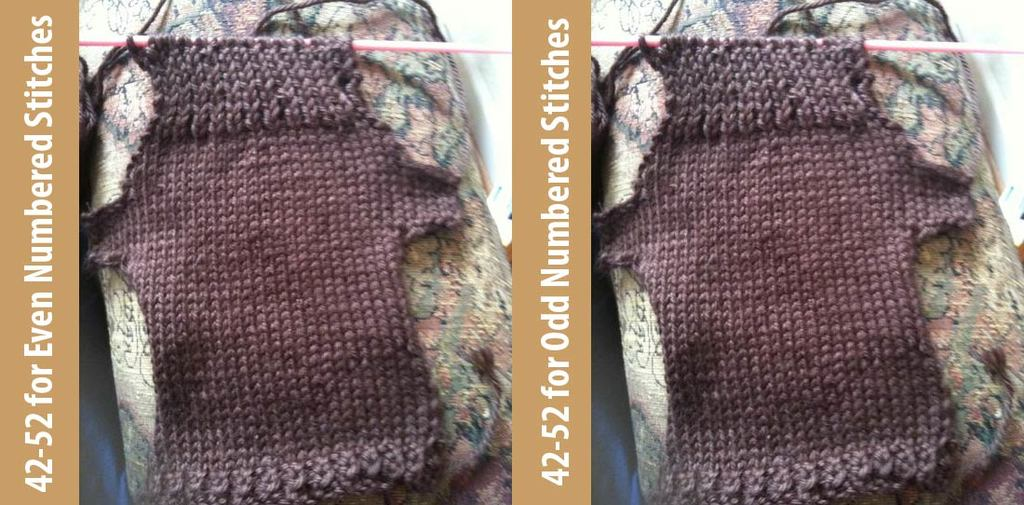 Step sixteen: Rows 42-52 for Odd Numbered Stitches